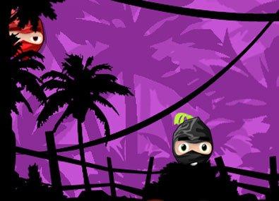 Evadare in stil Ninja