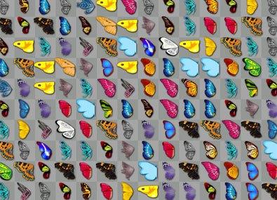 Fluturele Kyodai