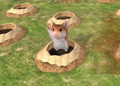 Hamster 3D